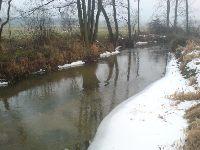 Rzeka Pilica - brzydka, ale rybna
